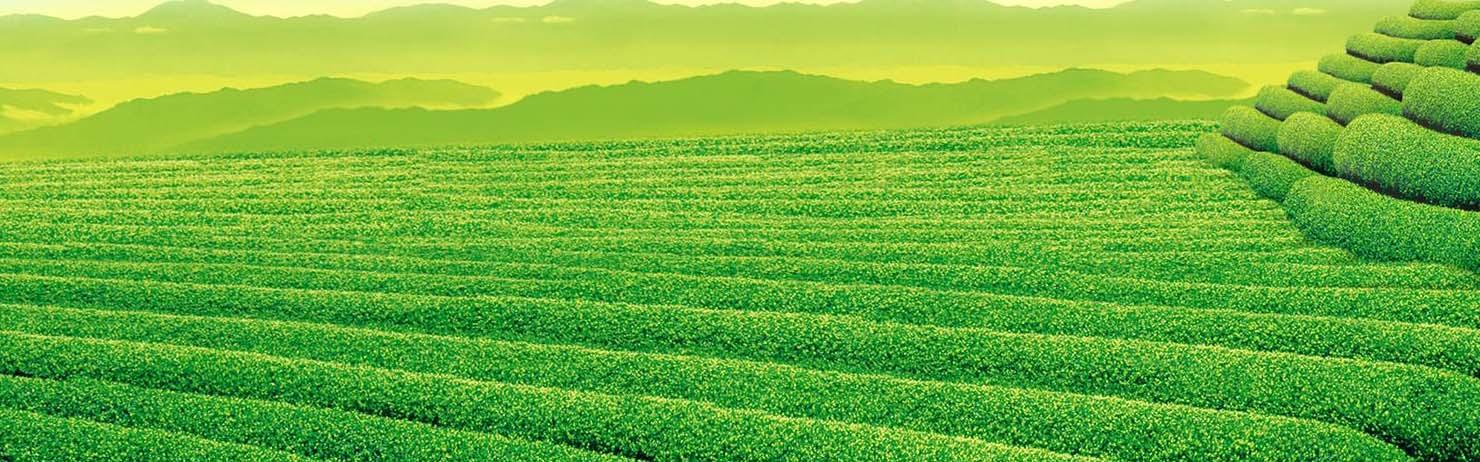 取之天然,用于自然;植物保健,和谐植保。